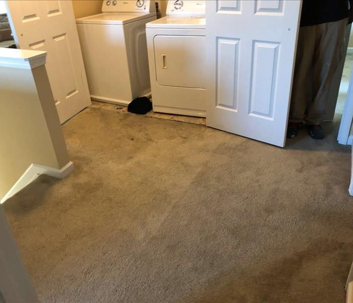 Washer dryer in closet carpet outside of closet soaked
