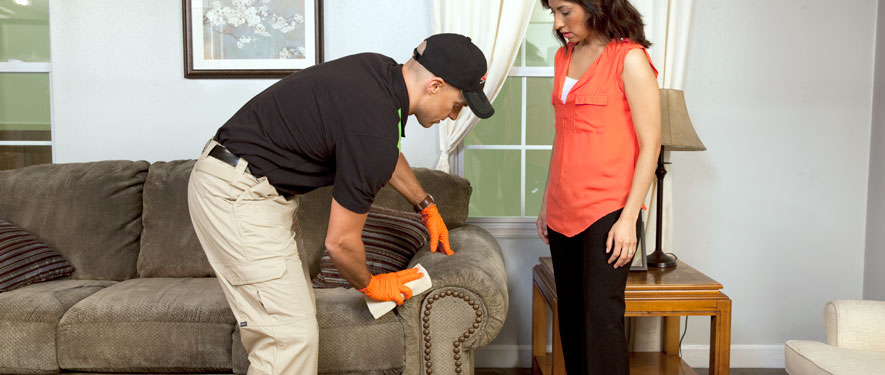 Burlington, NC carpet upholstery cleaning